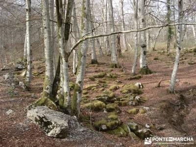 Salto del Nervión - Salinas de Añana - Parque Natural de Valderejo;senderismo sierra madrid fruto